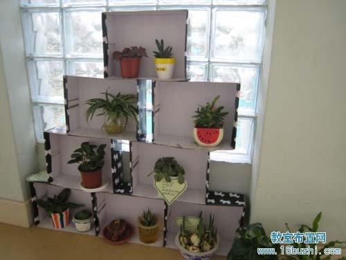 幼儿园中班自然角布置:植物观赏区