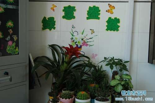 小学班级植物角布置:绿意盎然
