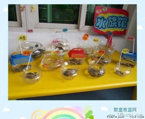 幼儿园自然角水族馆布置:乌龟金鱼