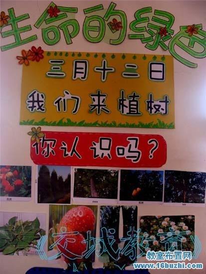 幼儿园3.12植树节主题墙设计
