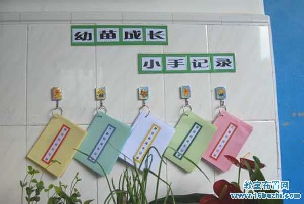 幼儿园自然角观察记录区