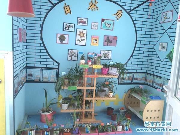 幼儿园自然区角背景墙面装饰图片